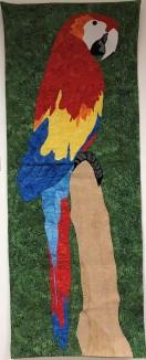 """Scarlet Macaw"" Eilis Watson"