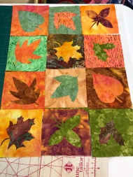 QGI Gillian Travis Workshop Interchange Applique (2)