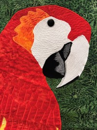Eilis Watson Parrot detail