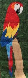 Parrot Eilis Watson